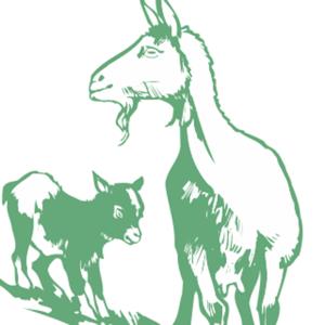 logo-Raspjevana-koza
